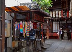 47385-Kyoto