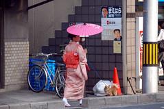 47392-Kyoto