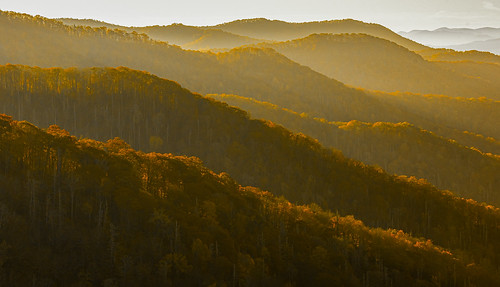 Fall view from Newfound Gap.