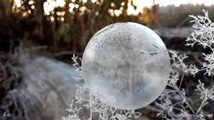 soapbubbles