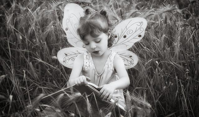 Le livre des fées