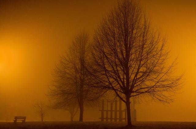 Seuls dans la brume