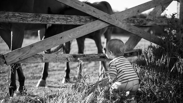 Jeune curiosité