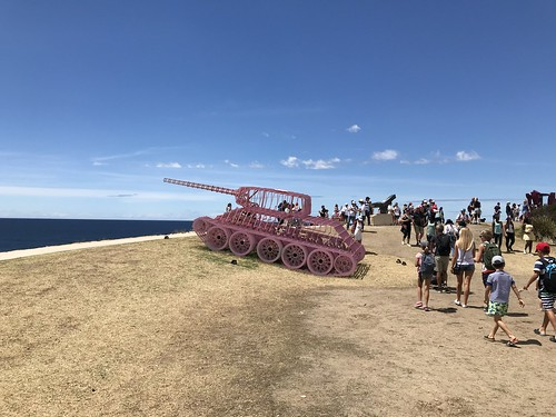 Pinktank Wrecked