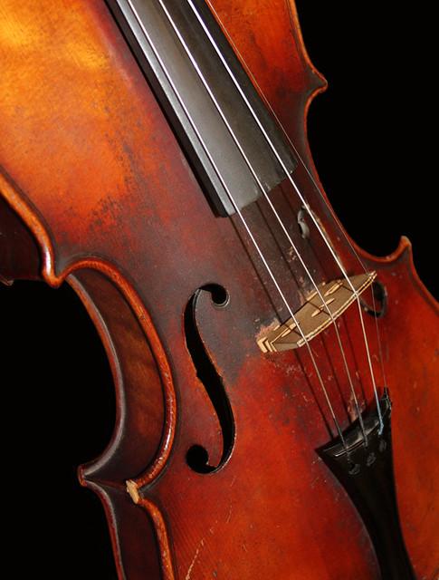 Le vieux violon de Lee
