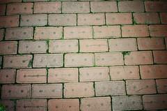 I love bricks