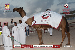 صور منافسات مهرجان قطر الثالث للمجاهيم والوضح (شوط المجاهيم) مساء  11-11-2019