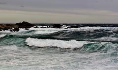 Shoreline Breakers IMG_5762