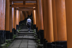 A visitor walks up steps at Fushimi Inari Shrine (伏見稲荷大社) in Kyoto, Japan