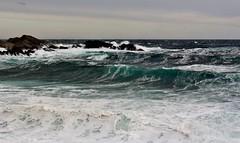 Shoreline Breakers IMG_5761