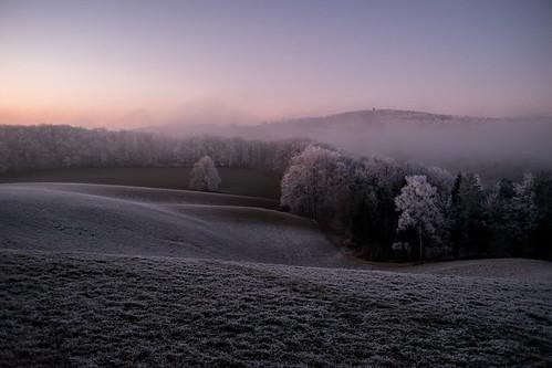 Frost Raureif in Elfingen mit Cheisacherturm im Hintergrund - Elfingen-Aargau-Schweiz-CH170101173148-©patrikwalde_com.jpg