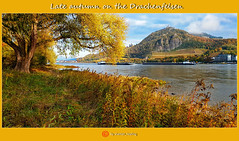 Spätherbst am Drachenfelsen/Late autumn on the Drachenfelsen