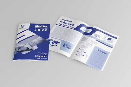 COMPANY PROFILE AND BUSINESS BROCHURE