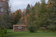 A cabin and Fall Colors in Michigan's Upper Peninsula