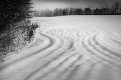 snow vibes