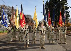 Albany Veterans Day Parade 2019