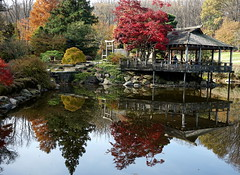 Japanese pavilion and fall color, Brookside Gardens, Wheaton Regional Park