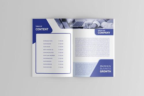 COMPANY PROFILE AND BUSINESS BROHCURE