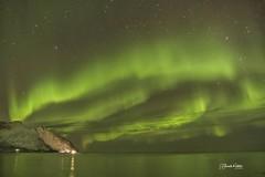 Aurora Borealis en Tungeneset Rutas Escénicas en la Isla de Senja Noruega. Pincha el enlace para ver todas las fotos http://elcoleccionistadeinstantes.es/auroras-boreales-en-las-rutas-escenicas-isla-de-senja-noruega Viaje En Busca de Las Luces del Norte I