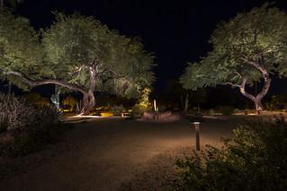 Rio Verde, Arizona - 2019