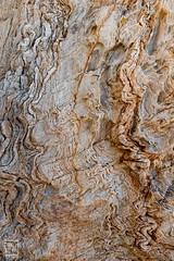 texture - Photo of Six-Fours-les-Plages