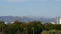 Hollywood sign over Park La Brea DSC_0061 (2)