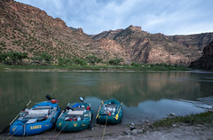Rafts await adventure along the shore of the Green River in Utah's Desolation Canyon Area