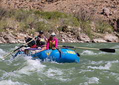 A BLM park ranger and volunteer survey Utah's Desolation Canyon Area by rafts in the Green River
