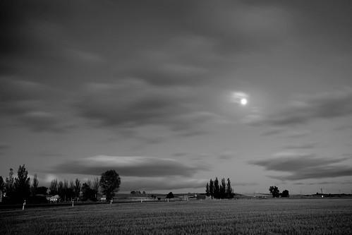 harvest moon...........