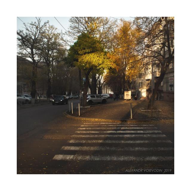 November evening (III)
