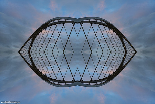 A bridge or a cage