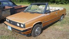 1985 Renault Alliance