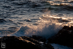 écume au soleil - Photo of Six-Fours-les-Plages