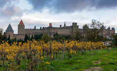 49600-Carcassonne