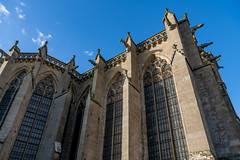 49697-Carcassonne