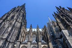 37264-Cologne