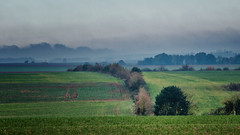 paysage a coulisses - Equirre - Pas de Calais - Photo of Hernicourt