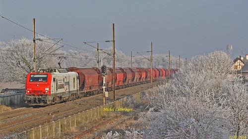 E 37509- Europorte- Train Hausbergen-Richwiller à Wittelsheim