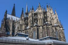37156-Cologne