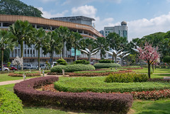 56420-Johor-Bahru