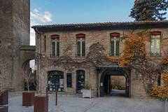 49683-Carcassonne