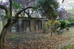 Old Paradise Gardens