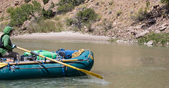 An explorer rafts down the Green River for a survey of Utah's Desolation Canyon Area