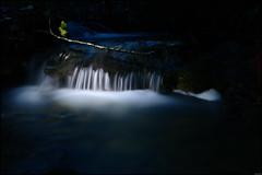 Ruisseau de nuit