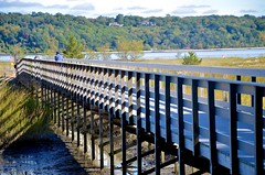 Boardwalk To Cold Spring Harbor Beach