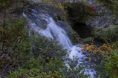 North Fork Silver Creek Wild and Scenic River