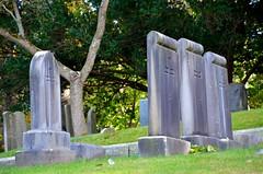 Gravestones In Young's Memorial Cemetery