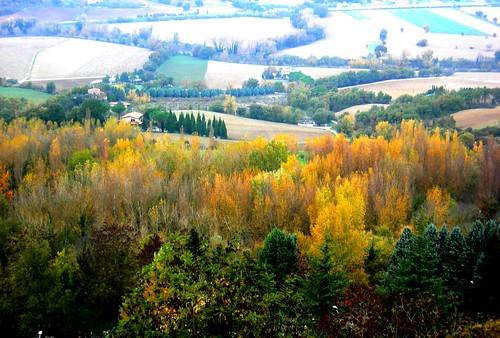 Todi landscape