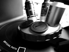 Microscope 36