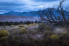 san luis valley evening